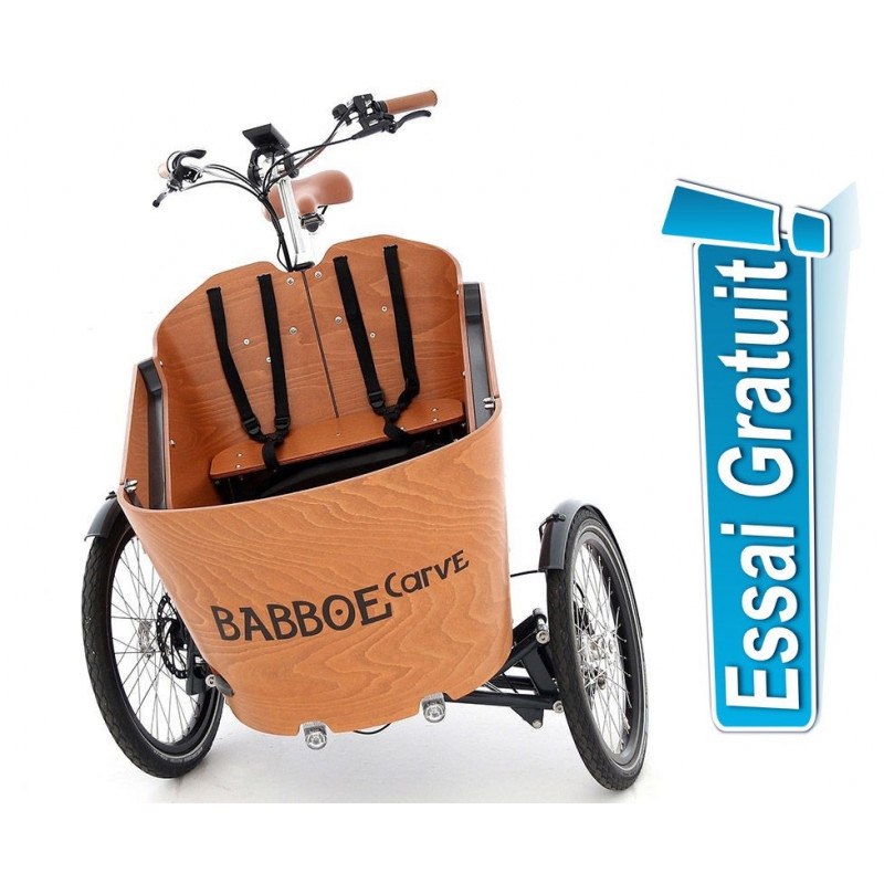 Triporteur Babboe Carve Mountain